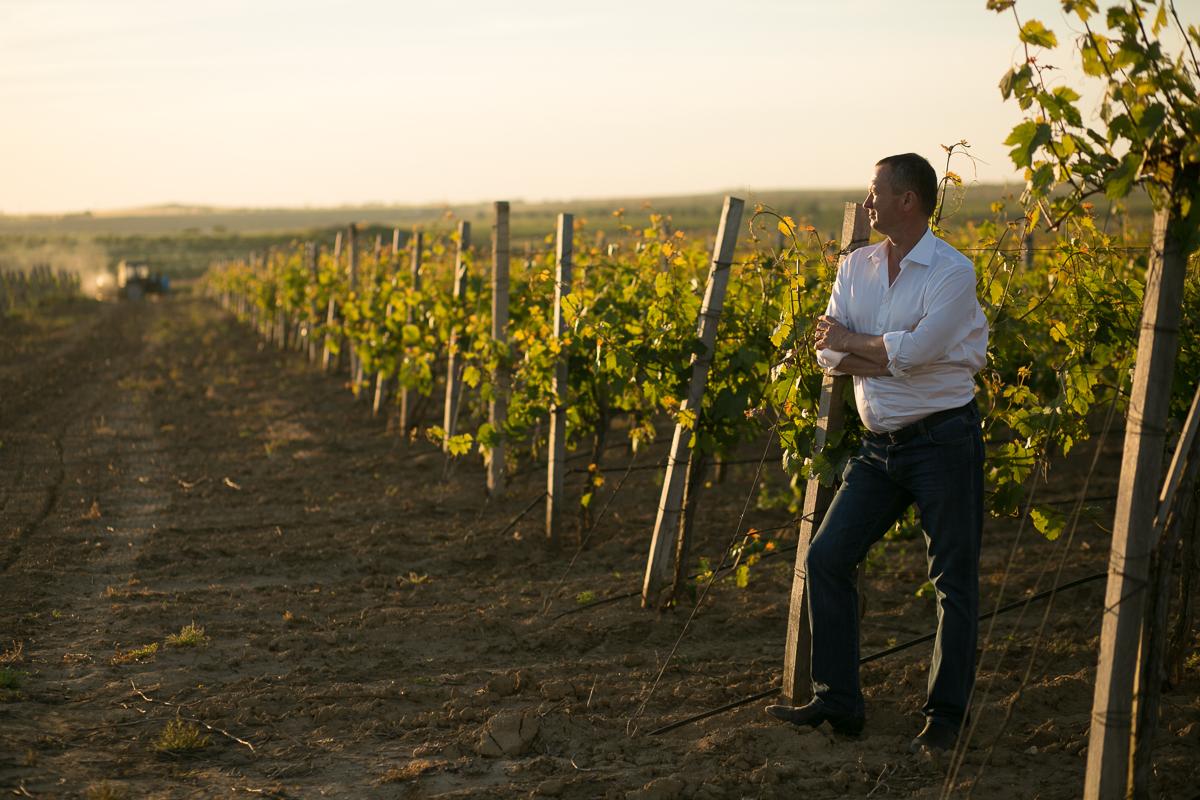 Философия крымского виноделия должна базироваться на местных сортах винограда.